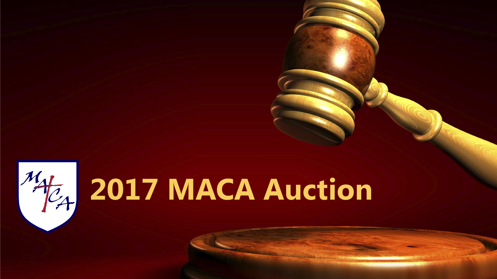 2017 MACA Auction